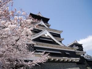 熊本城です